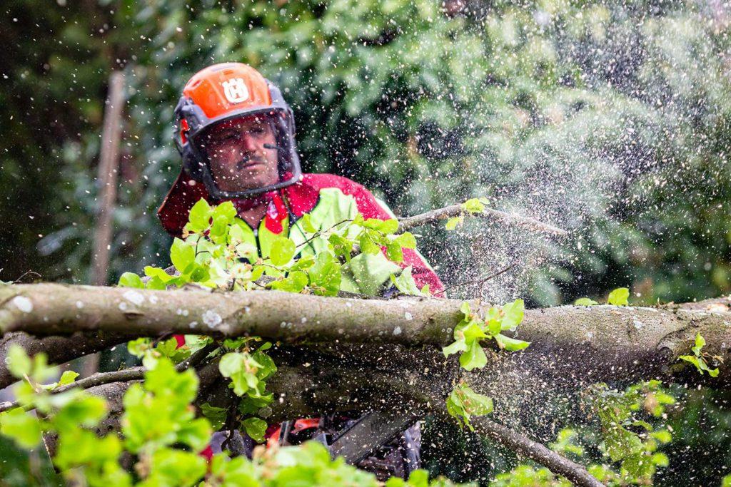 Waldarbeiter Fotoreportage