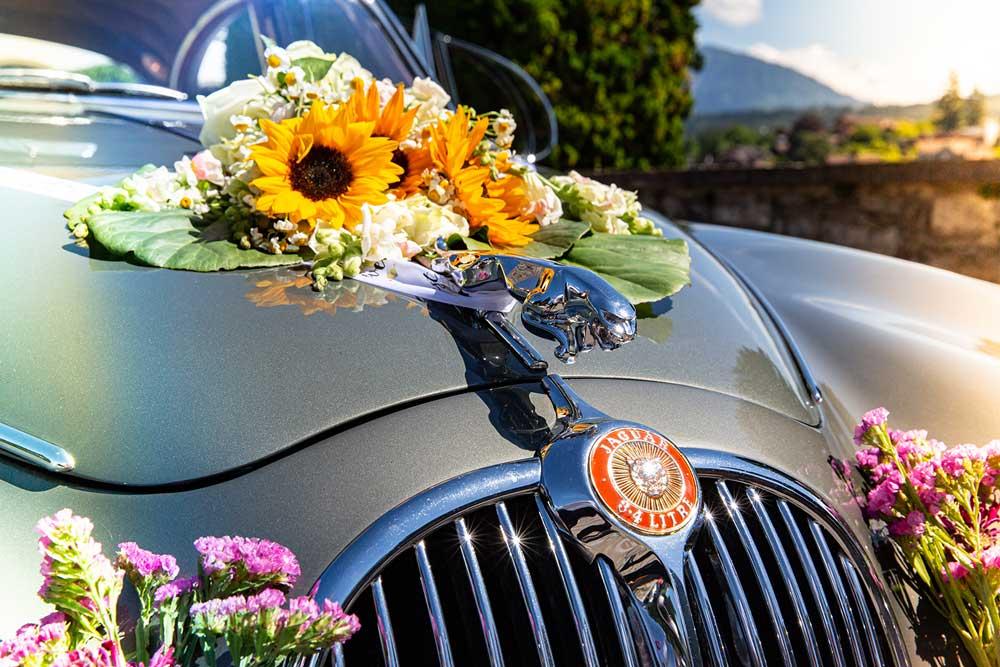 Oldtimer-Jaguar für die Hochzeit